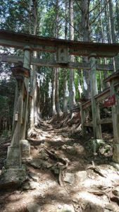三峯神社 奥宮への鳥居1