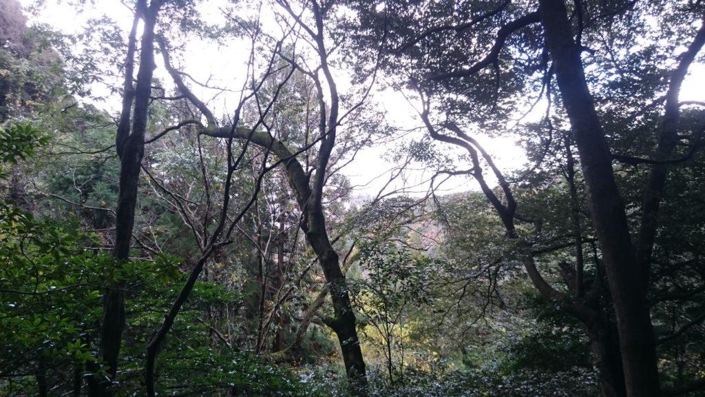 韓竈神社への道?