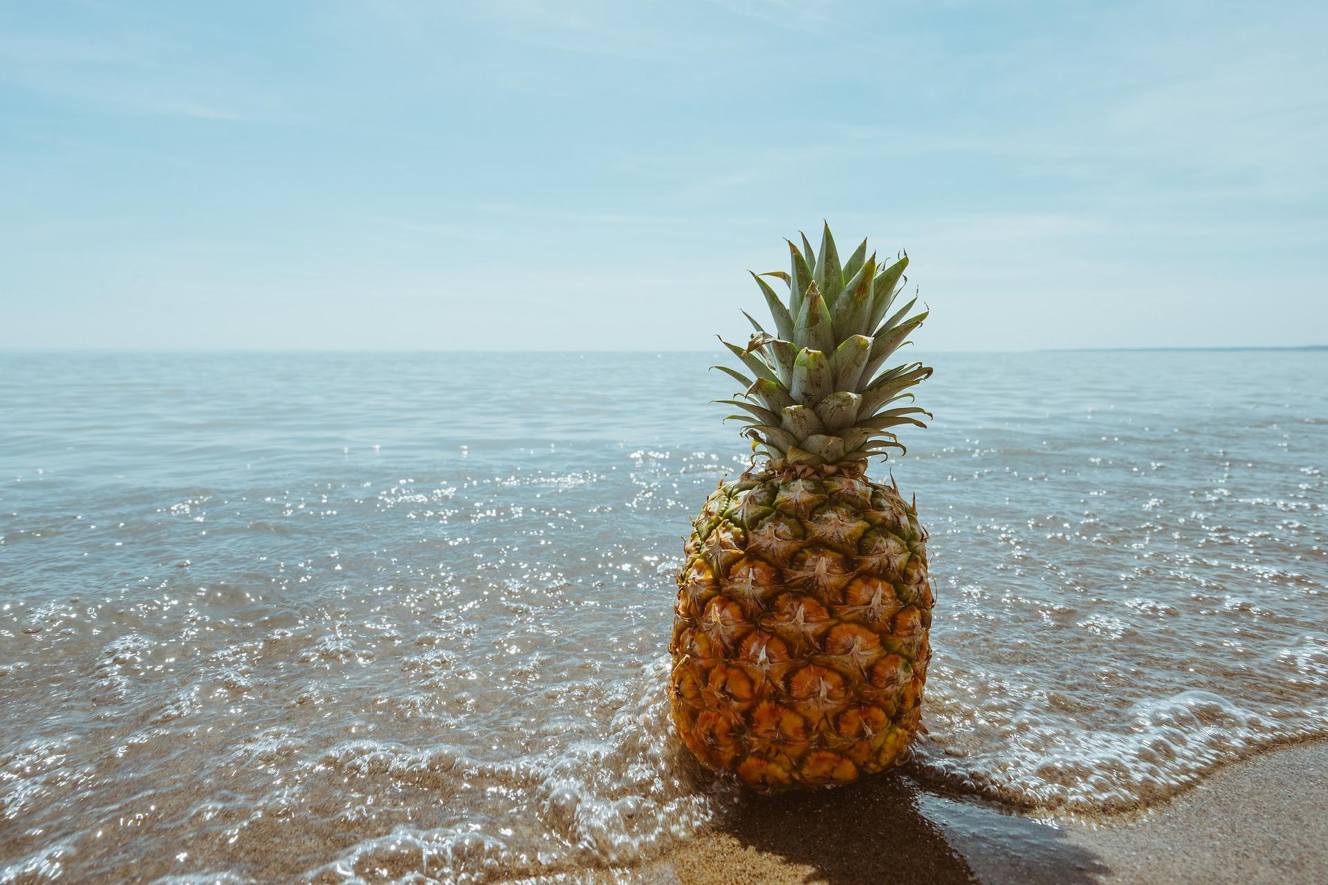 海のパイナップル「ホヤ(海鞘)」が好き!食べたい!どんな味?名産地や栄養は?