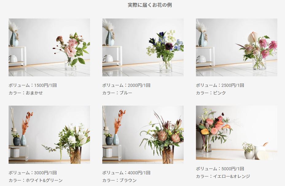 HitoHana お花の定期便「実際に届くお花の例」